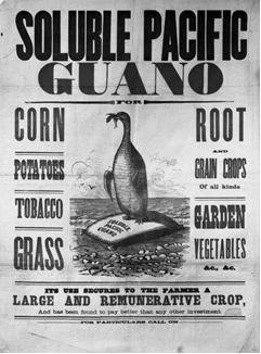 guano|www.delanceyplace.com